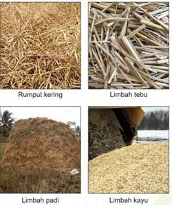 kompor biomas